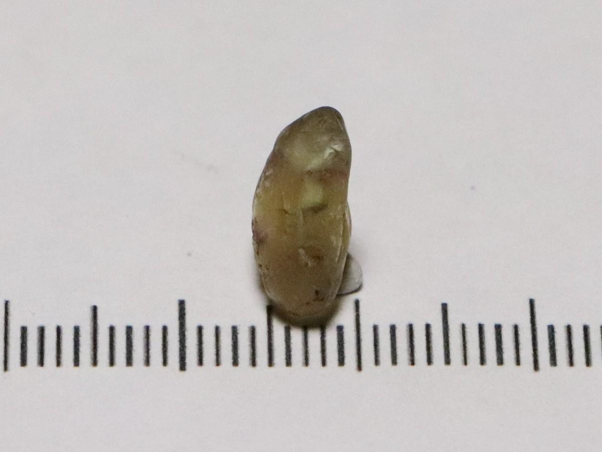 Mali Garnet 4.94cts