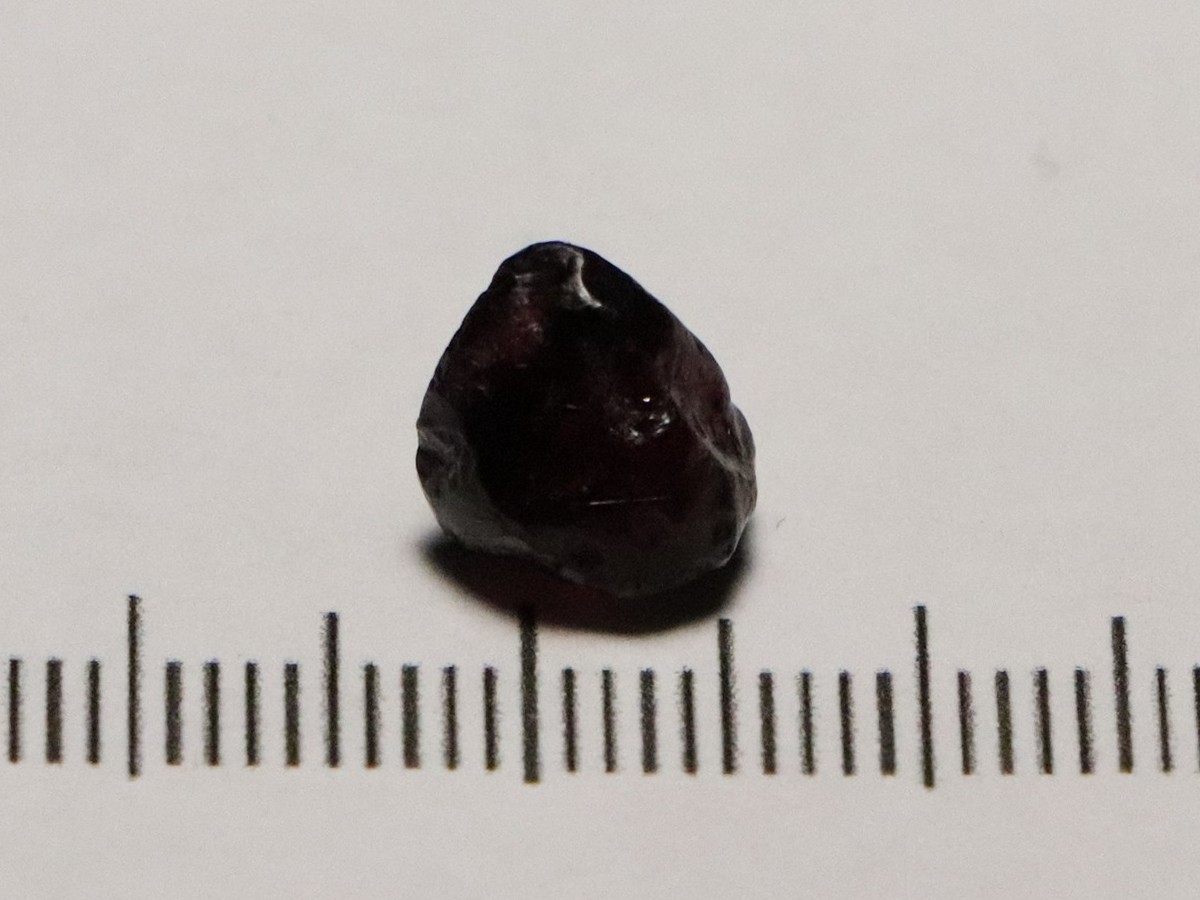 Ant Hill Pyrope 4.08cts